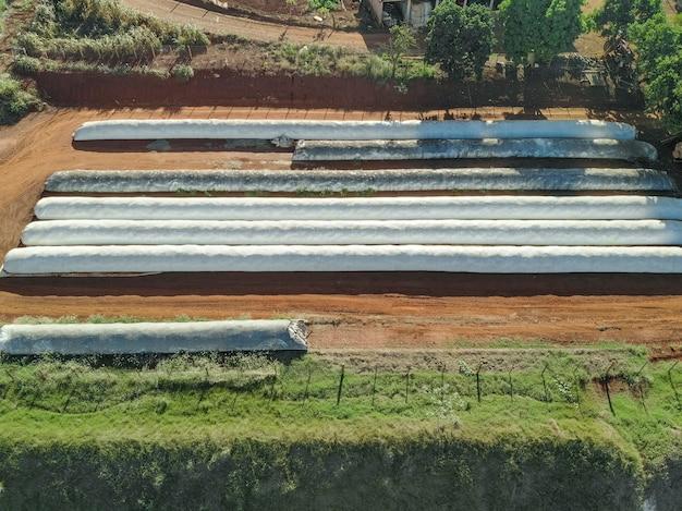 L'ensilage de maïs est broyé et prêt à être déposé dans une tranchée de silo, une fosse. le silo de maïs sur fond de ciel bleu est enfoncé dans la fosse. nourriture pour le bétail en hiver..
