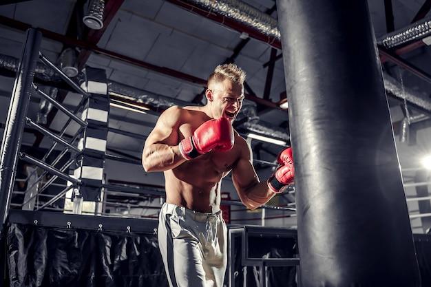 Entraînement de boxeur sur un sac de boxe dans la salle de gym.