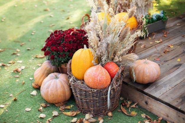Entrée décorée de maison avec des citrouilles dans un panier et un chrysanthème halloween thanksgiving