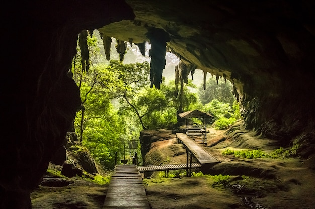 Entrée de la grotte dans le parc national de niah, niah cave dans le sarawak en malaisie