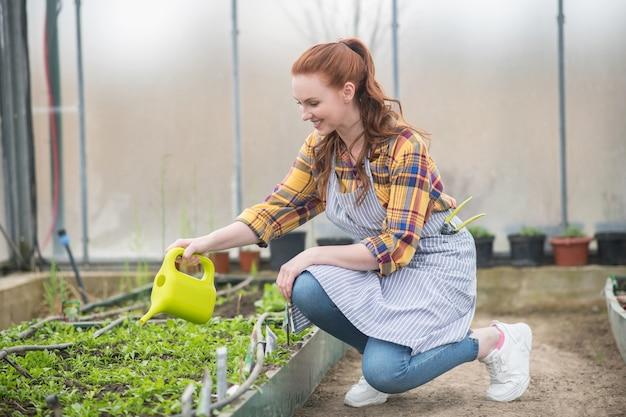 Entretien du jardin. souriante belle jeune femme en tablier rayé avec arrosoir vert clair accroupie près de verdure en serre
