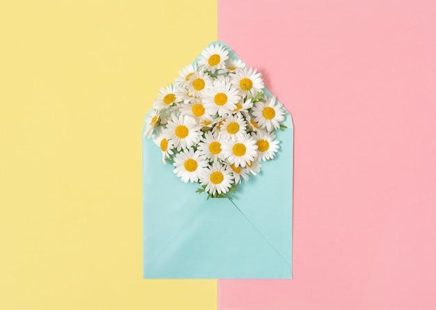 Enveloppe de fleurs de camomille daisy blooms rose papier jaune