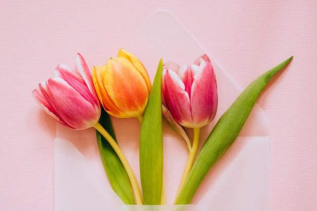 Enveloppe transparente mate ouverte avec des tulipes multicolores sur fond rose. concept de pâques, plat poser, espace copie.