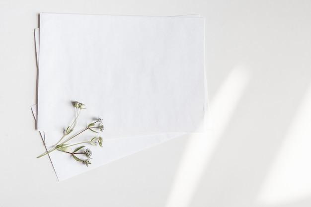 Enveloppes vierges blanches avec une petite fleur sauvage sur une surface blanche avec des reflets clairs