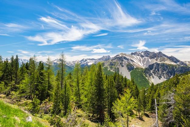 Environnement de haute altitude idyllique environnement non contaminé