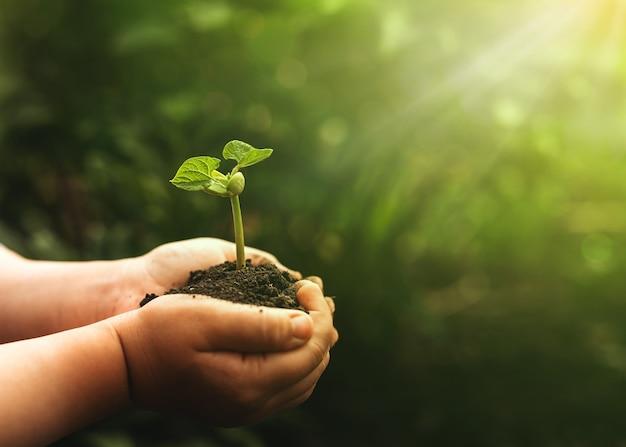 Environnement journée mondiale de la terre