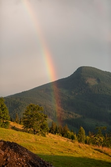 Environnement rural avec arc-en-ciel à la lumière du jour