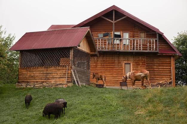 Environs de la maison rurale à la lumière du jour