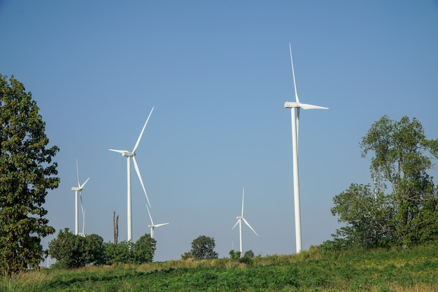 Éolienne blanche au milieu du pré