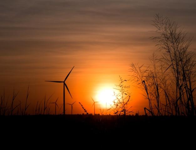 Éolienne silhouette et terrain avec gazon au crépuscule