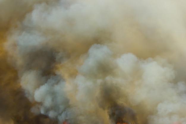 Épaisse fumée noire dans un feu