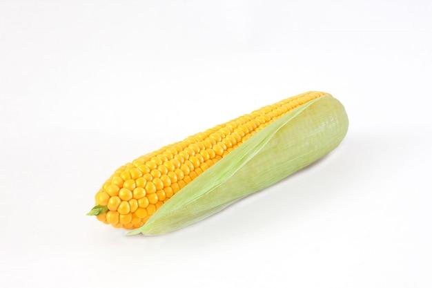Épi de maïs isolé sur fond blanc