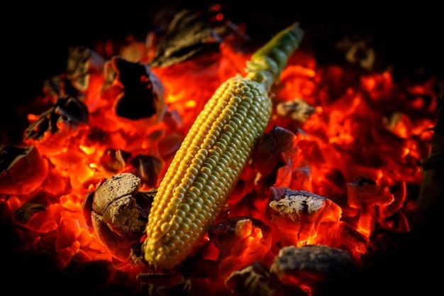 Épi de maïs mûr est frit sur des charbons ardents rouges, gros plan