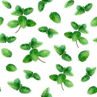 L'épice d'herbe de menthe laisse le modèle sans couture sur le fond blanc. illustration botanique dessinée à la main à l'aquarelle. collection d'herbes de cuisine aquarelle. impression pour textile, papier peint, emballage