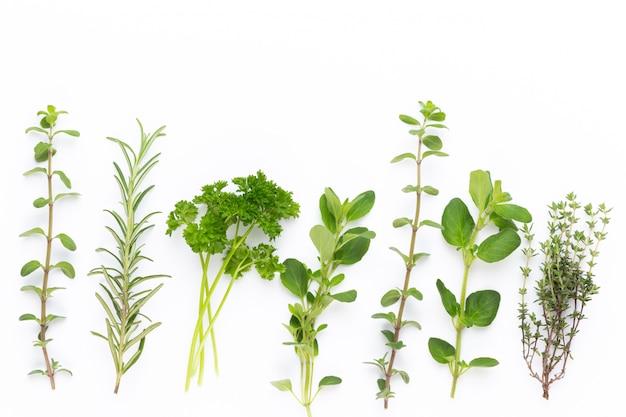 Épices à base de plantes sur un tableau blanc.