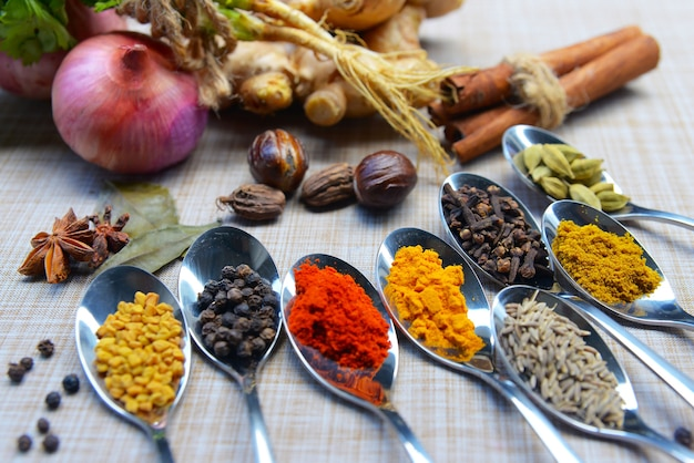 Épices et herbes indiennes, ingrédients alimentaires indiens