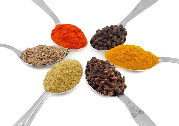 Épices indiennes en cuillères