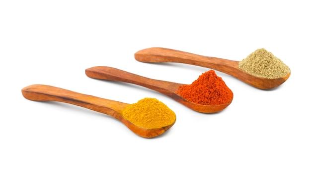 Épices indiennes dans des cuillères en bois