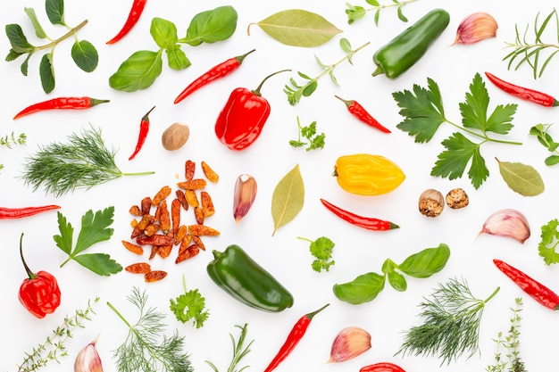 Épicez les feuilles d'herbes et le piment sur fond blanc. motif de légumes. floral et légumes sur fond blanc. vue de dessus, pose à plat.