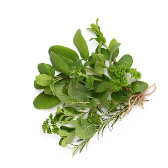 Épicez les feuilles d'herbes et le piment. des légumes. fleurs et légumes. vue de dessus, mise à plat.