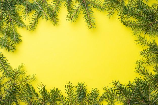 Épinette branches cadre sur jaune