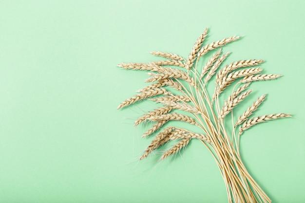 Épis de blé bouchent