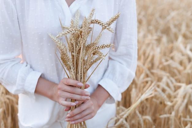 Épis de blé dans les mains d'une fille dans un champ au coucher du soleil. fermer