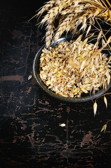 Épis et graines de blé et d'avoine mûrs