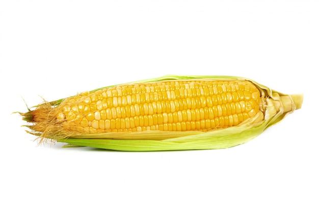 Épis de maïs frais ou épis de maïs isolés sur fond blanc