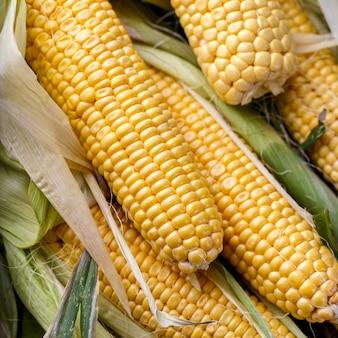 Épis de maïs frais se bouchent, vue de dessus