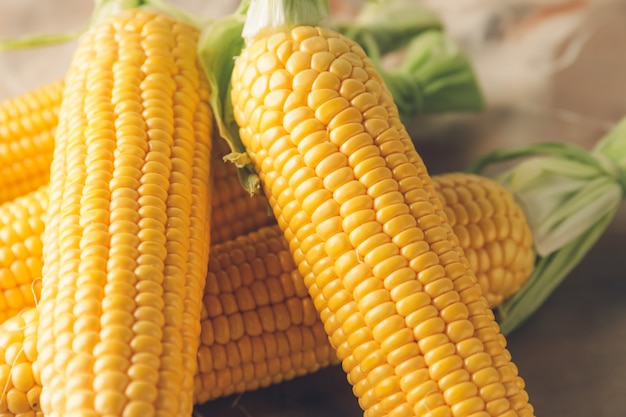 Épis de maïs frais sur table, gros plan