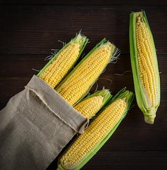 Épis de maïs jaunes mûrs dans un sac en toile