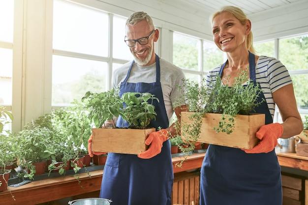 Épouses caucasiennes d'âge moyen tenant des boîtes avec des herbes