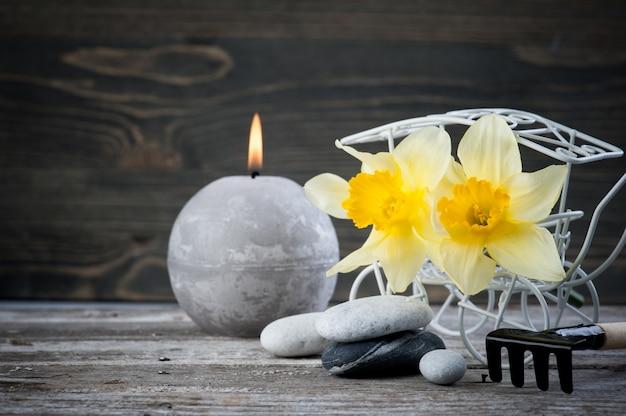 Équilibrer les cailloux et les fleurs jaunes