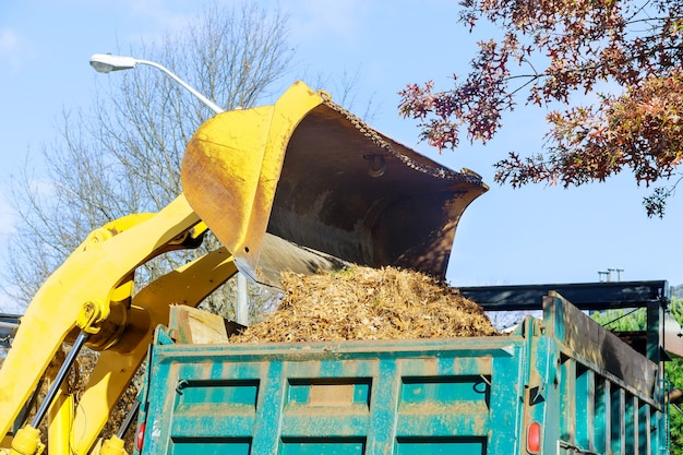 L'équipe d'amélioration de la ville enlève les feuilles mortes avec une excavatrice un camion en travaux saisonniers réguliers sur l'amélioration des lieux publics