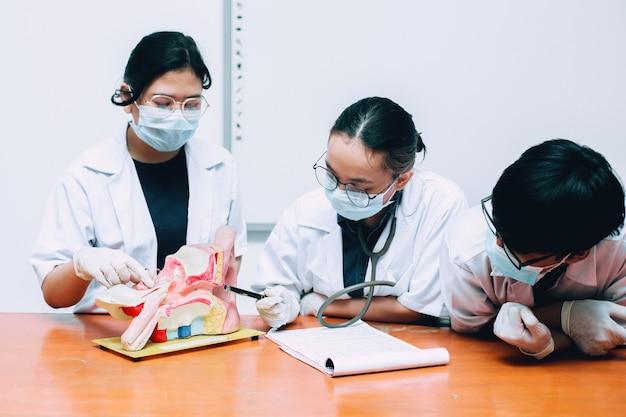 Équipe de médecins discutant de l'organe auditif