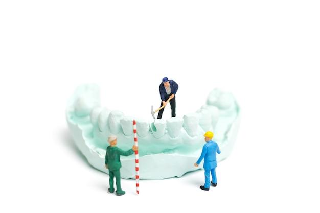 L'équipe miniature worker dépose de fausses dents