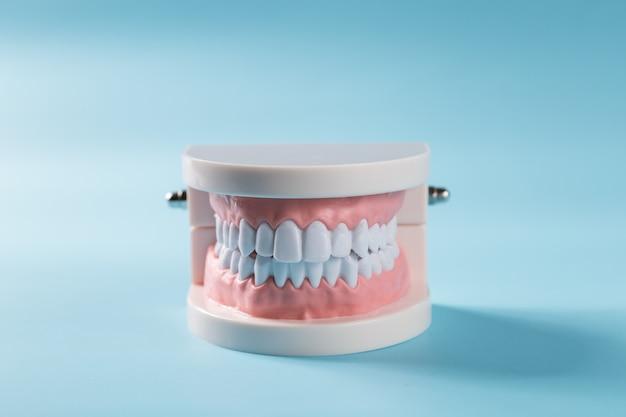 Équipement sain outils soins dentaires