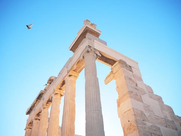 Erechtheion temple à athènes, grèce. photographie de voyage.