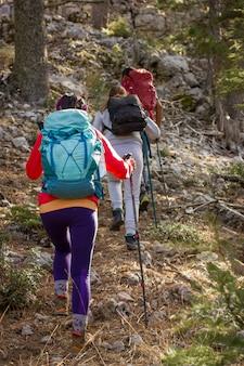 Escalade en montagne. trois personnes montent avec des bâtons de randonnée et des sacs à dos.