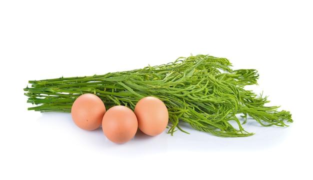 Escalade wattle, acacia, cha-om avec des œufs pour la cuisine, cuisine thaïlandaise
