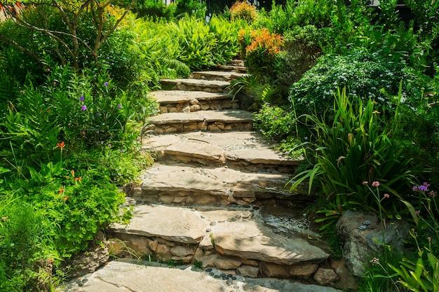 Un escalier en pierre à travers un parc.