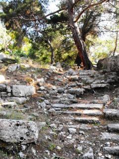 Escaliers anciens dans phazelis