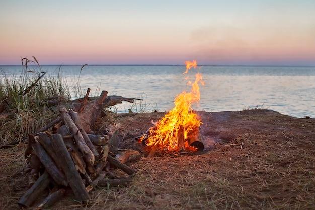 Escapade familiale locale. rassemblé des bûches de bois pour feu de camp au camping, nuit dans la nature sauvage, mode de vie sain et actif, été en toute sécurité, concept d'emplacement de séjour