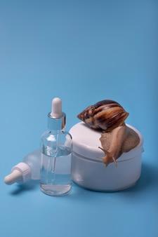 Escargot achatina rampant sur un pot de crème pour le visage dans le fond bleu. espace pour le texte.