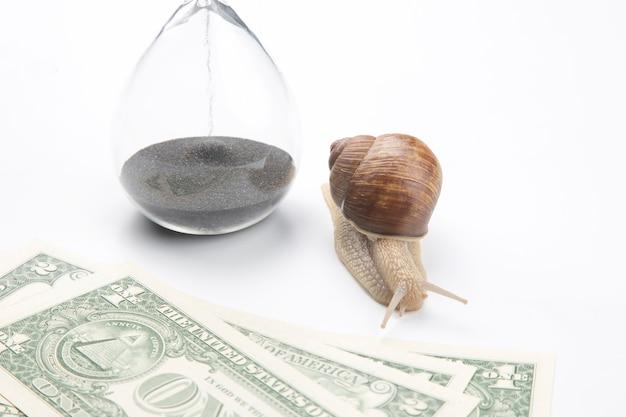 Escargot à côté du sablier et des dollars sur fond blanc. rapidité et stabilité dans l'augmentation des revenus. temps de travail et de repos. réussite commerciale financière. objectif d'investissement en temps