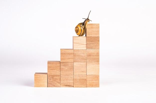 Escargot monte les escaliers de carrière. échelle faite de cubes en bois. concept de développement personnel, carrière, changements, succès.