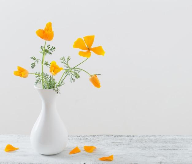 Eschscholzia dans un vase blanc