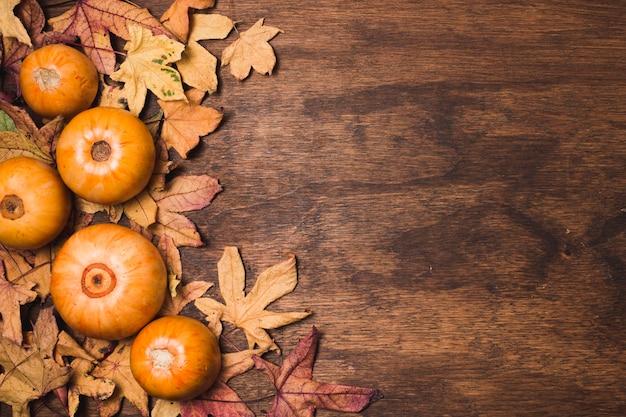 Espace de copie de feuilles et légumes d'automne