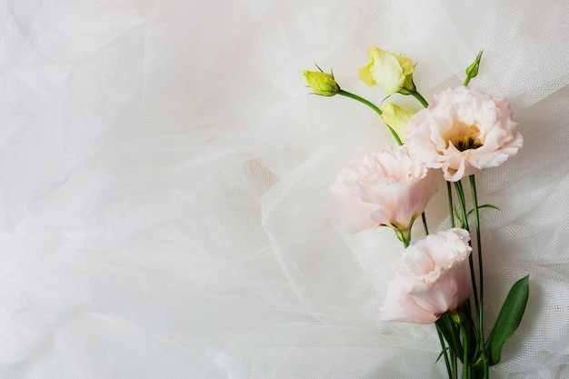 Espace de copie avec des fleurs élégantes